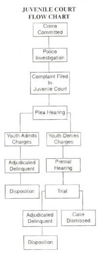 Juvenile Court Flow Chart