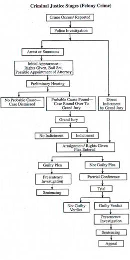 Crimal Court Flow Chart